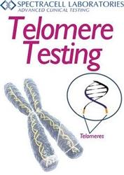 Telomere Testing Information